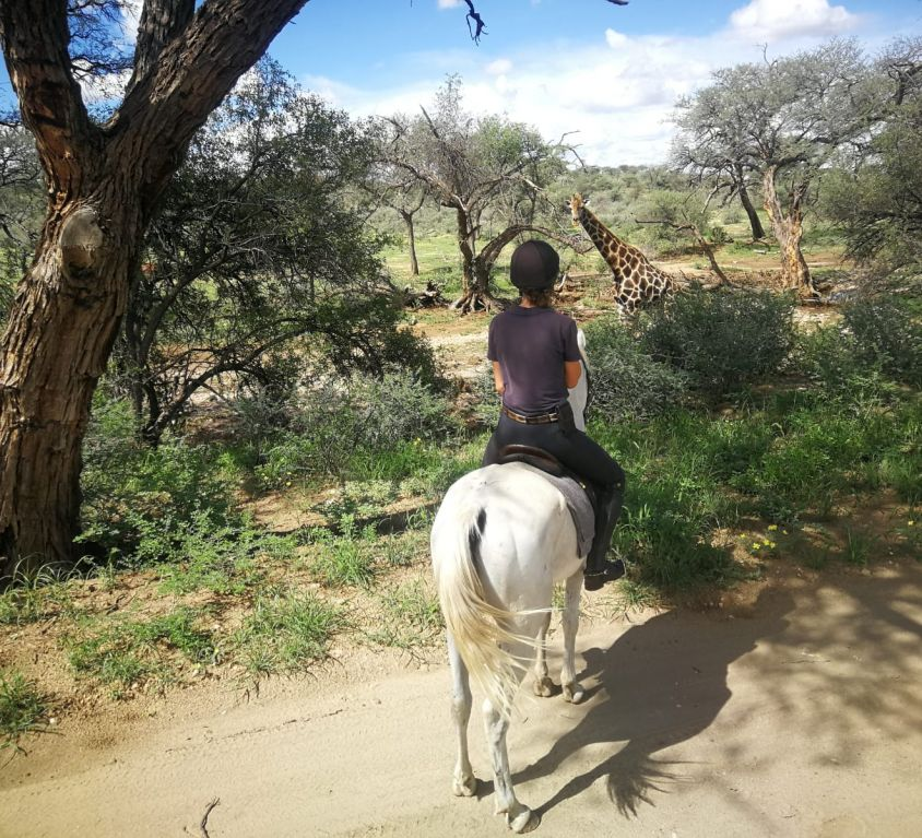horse-riding-12