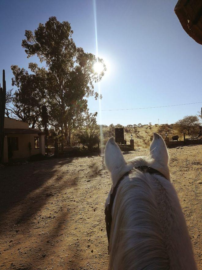 horse-riding-9